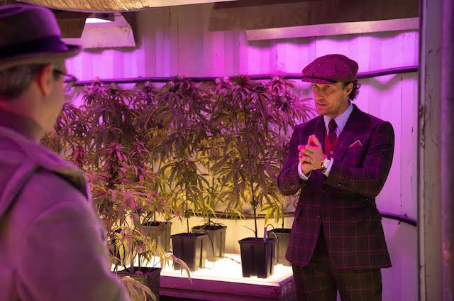 """The Gentlemen"" de Guy Ritchie. Plantations de cannabis."